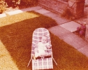 Baby Debbie on bouncer in Gordon Road garden Summer 1979