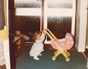Debbie with her new doll's push-chair 1982