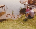 Debbie feeding my khaki campbell ducks at the Haylings moorings - 1983
