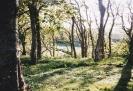 Scotland, May 1994